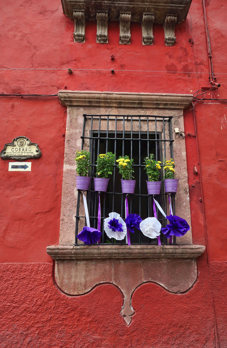 Some homes have decorated their windows and doors in purple and white.