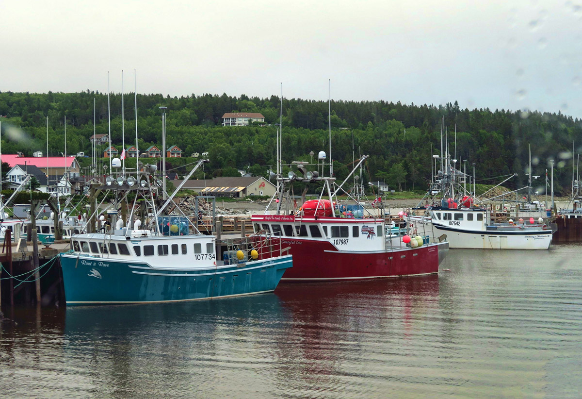 The red boat belongs to Alma Lobster Shop.