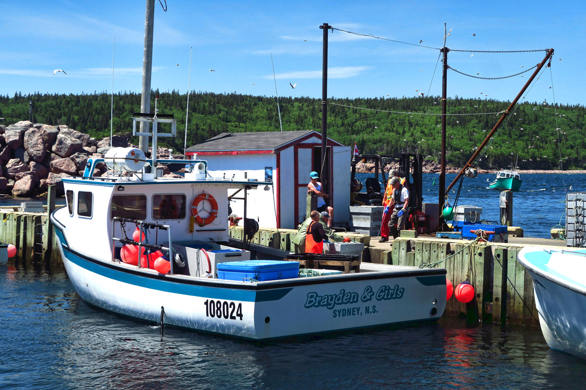 I pulled off the road to visit Neil's Cove just as the lobster fishermen were coming back.