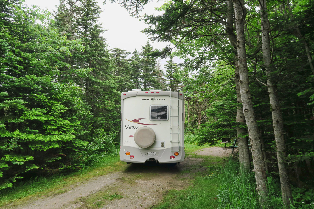 Site #14 in J.T. Cheeseman Provincial Park.