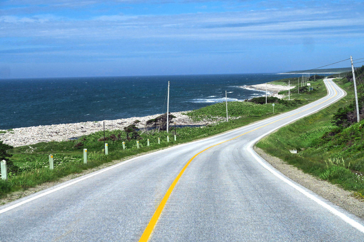 "Hwy 430, also known as ""The Viking Trail"" runs primarily along the west coast of the Northern Peninsula."