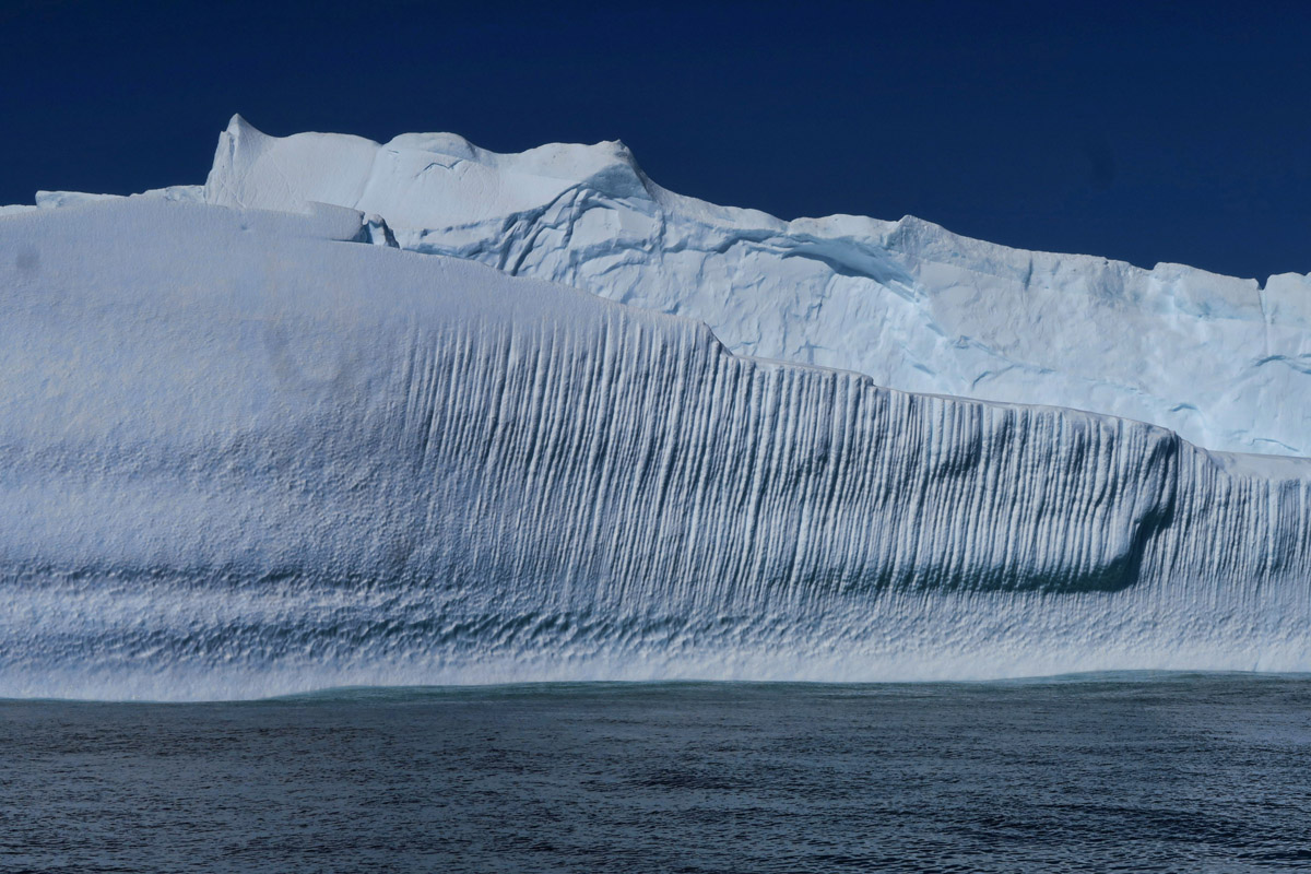 Steve, our interpreter tells us that the grooves are from riding the ocean currents from Greenland.