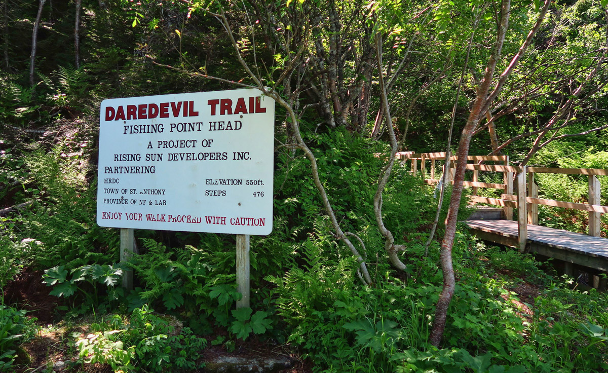"""Daredevil Trail?"" Really? Dare me..."