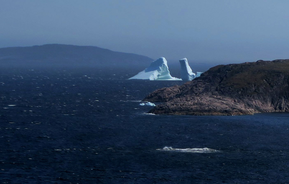 From this trail, it's possible to get a view of several icebergs stranded in the coves.
