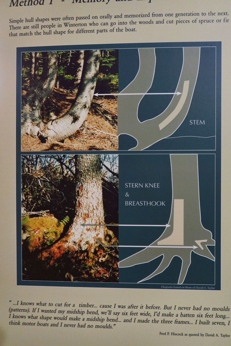 This poster demonstrates how the curvature of a tree near the root system would be used for both the stem and stern of a wooden boat.