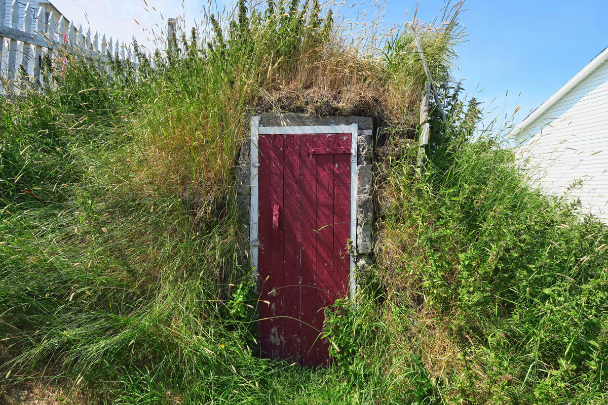 Root cellars are common in Newfoundland, and still in use today.