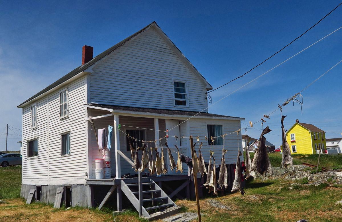 A typical Fogo Island house.