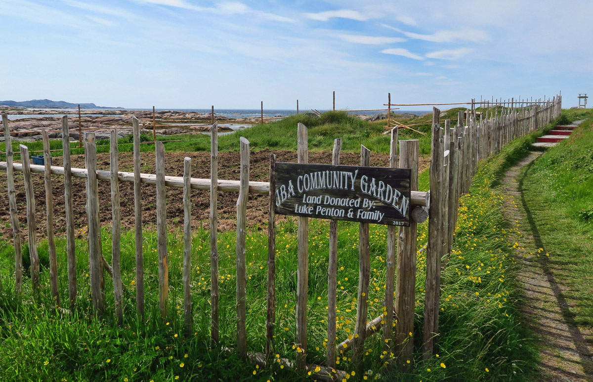 "Community or ""honor system"" gardens are also a frequent site in all of Newfoundland, not just Fogo Island."