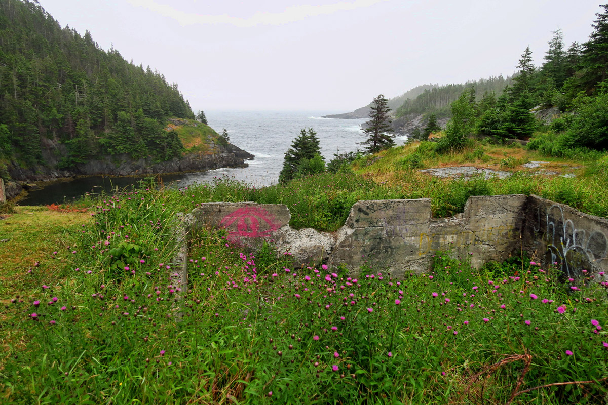 This section of the trail runs through the abandoned settlement of La Manche. Foundations and fireplaces still stand where once was a community.