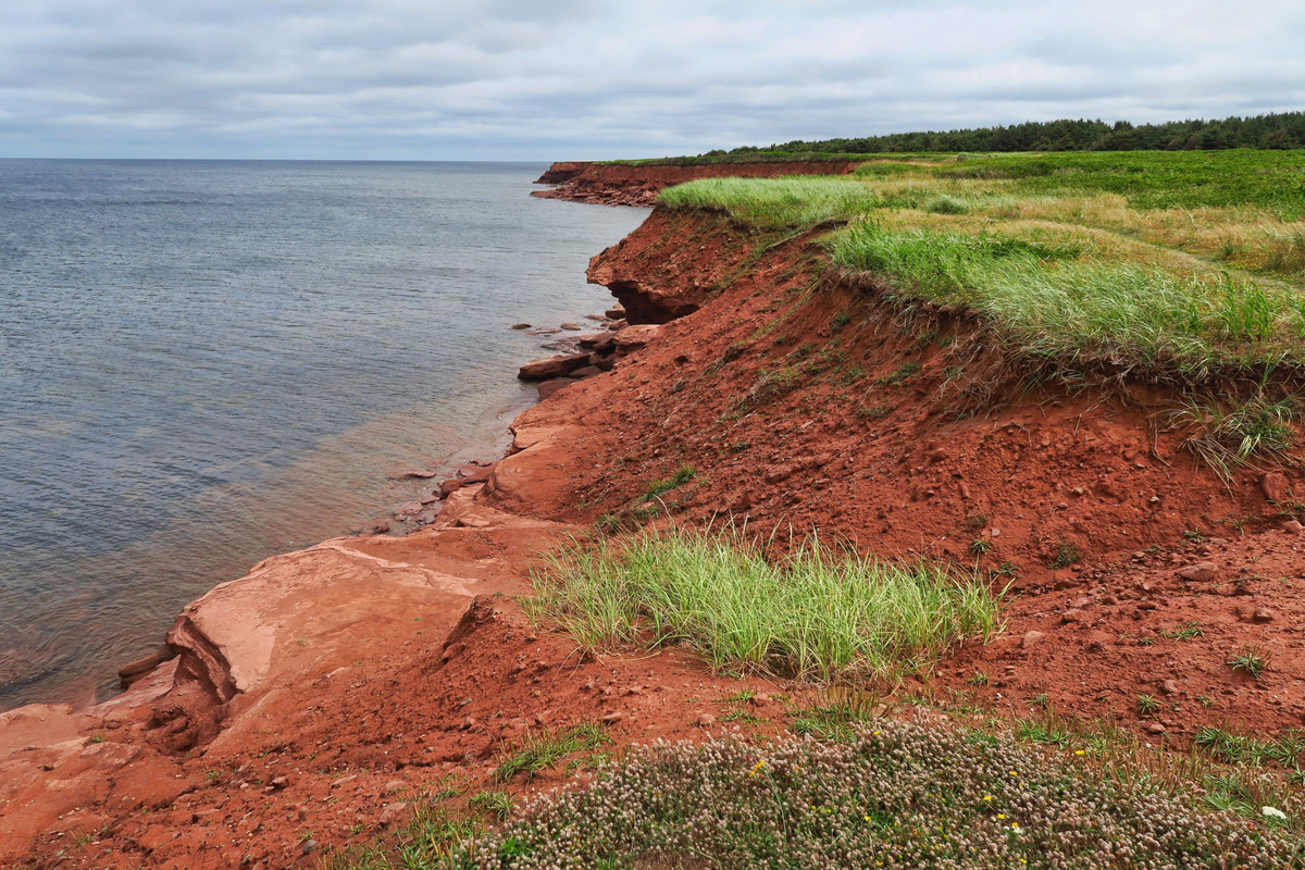 The best of the red sand beaches can be seen at Cavendish National Park.
