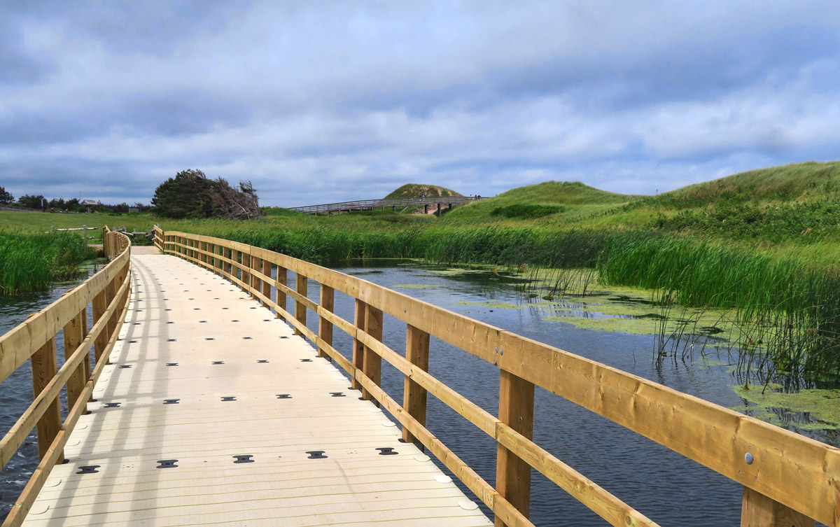 "A ""floating boardwalk"" along one of the National Park trails."
