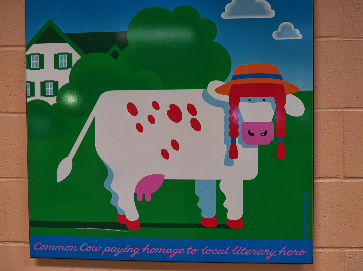 "One of Cows Creamery's tee-shirt designs. The caption reads, ""Common Cow paying homage to local literary hero,"" Anne of Green Gables, of course."