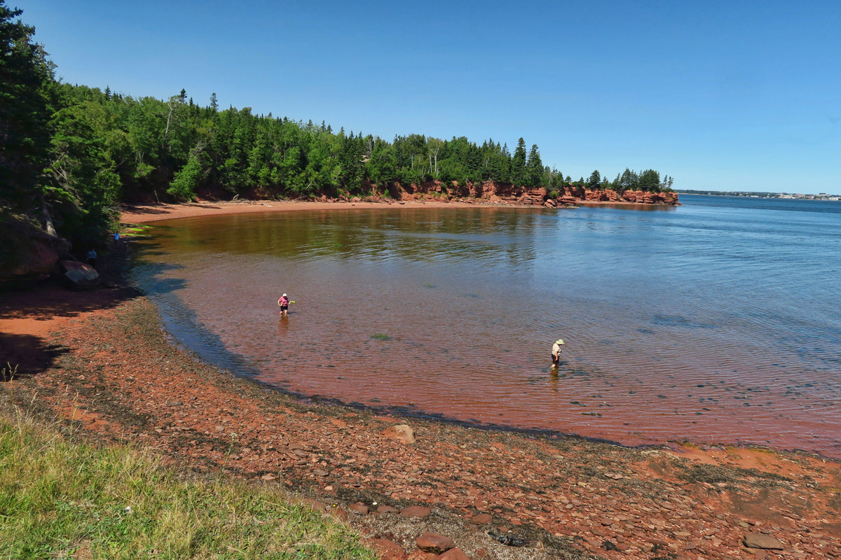 The gulf stream waters around Prince Edward Island keep the water temps higher than the rest of the maritimes.