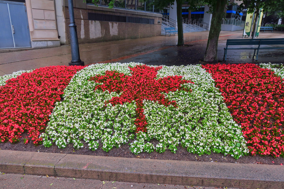 When it comes to national pride, no one does it more beautifully than Canada!