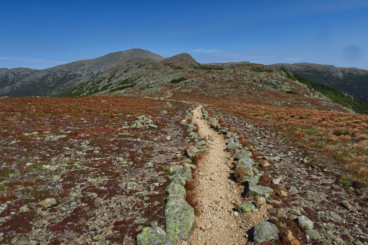 "The vegetation turns to ""alpine tundra"" at lower elevation than it does out west."