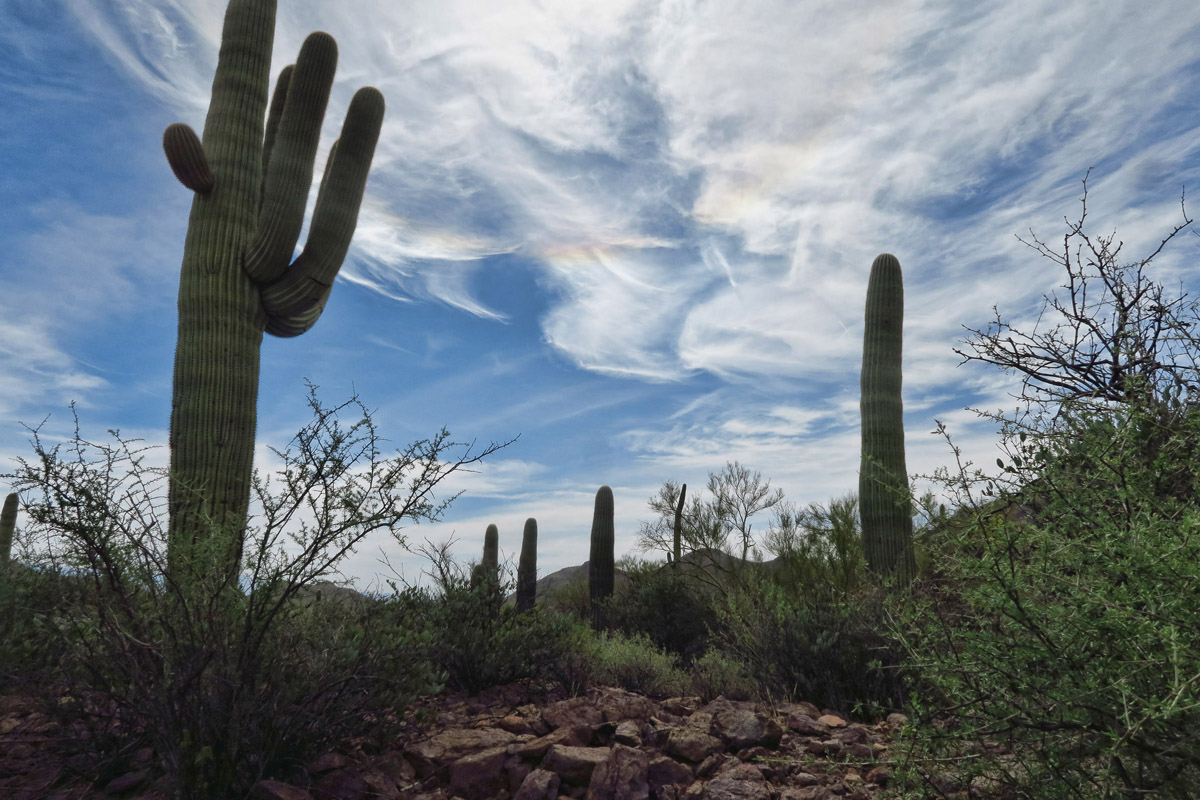 In the desert southwest, the sky is often the main attraction.