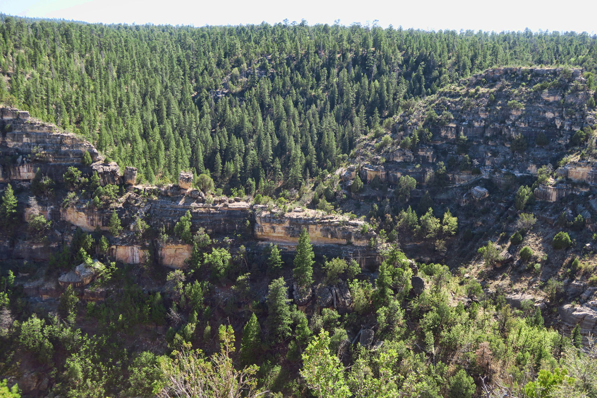 "The formation of the canyon offered some protection from the weather, as there is a ""sunny side"" where warmer, drier air offers warmth, while the ponderosa pine and fir across the way offer cool shade."