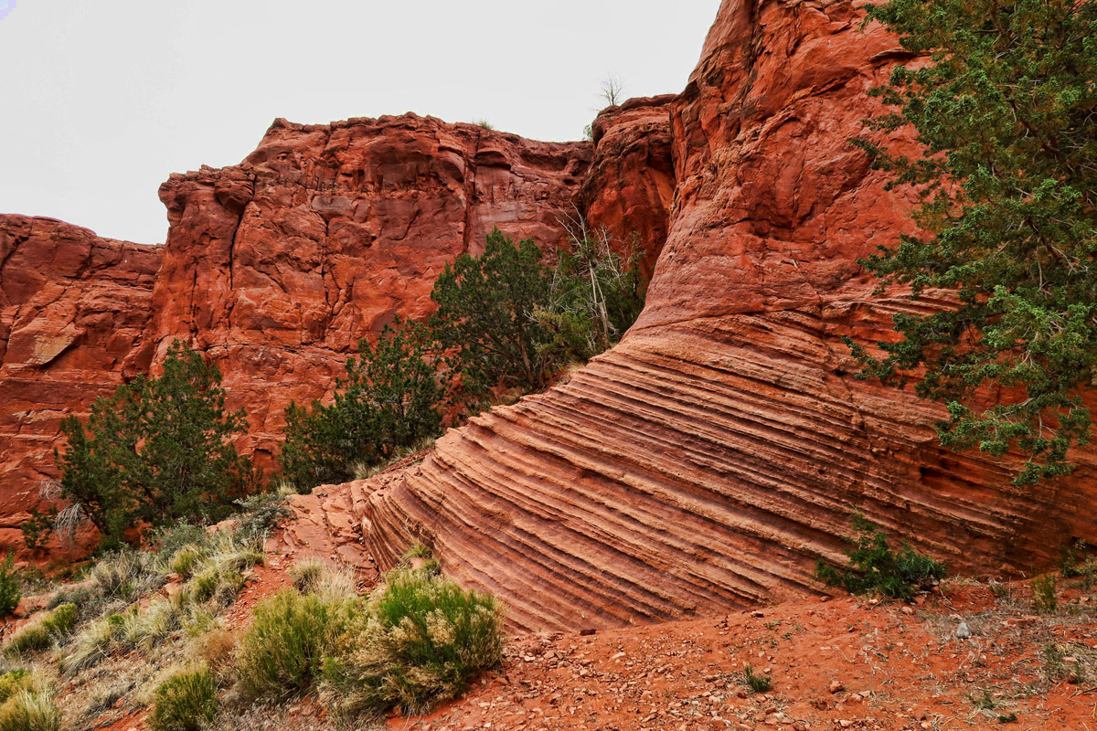 They have some gorgeous red rock canyons in their pueblo, but hiking is forbidden there without a $7 tour.
